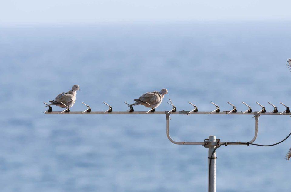 Vue imprenable sur la Mer Méditerranée